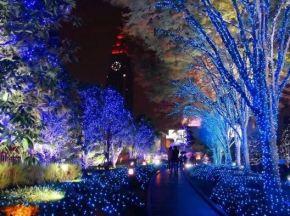 bluelights
